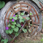 wheel and vines